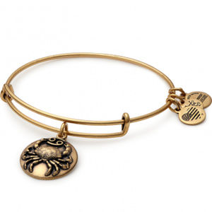 Alex and Ani Cancer III Zodiac Bracelet